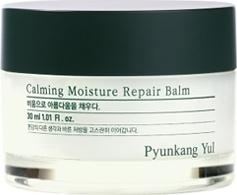 Pyunkang Yul Calming Moisture Repair Balm